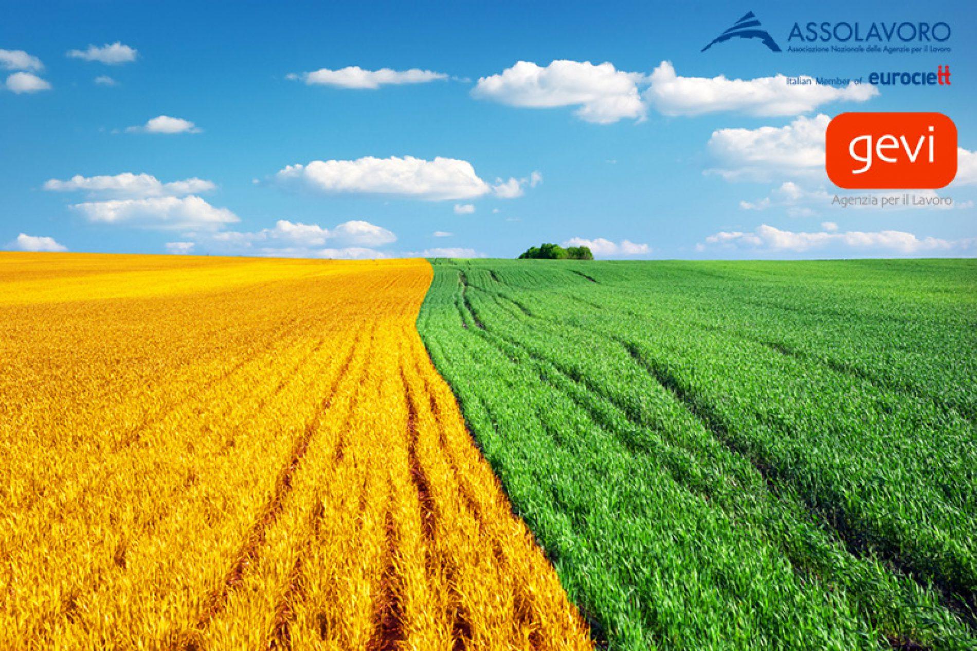 Tavolo di confronto sulle attività di contrasto al fenomeno del caporalato e del lavoro nero in agricoltura