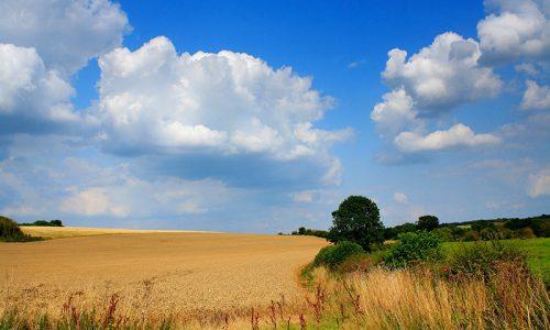 Società agricola: cambio di soci e agevolazioni fiscali