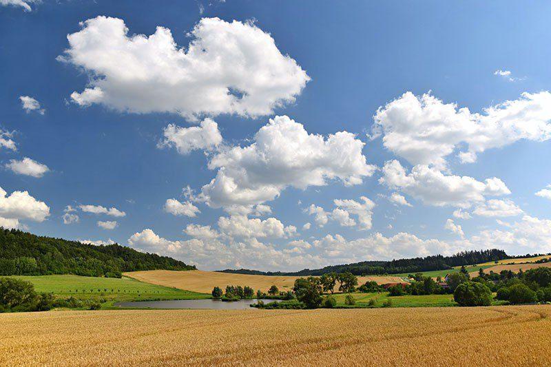 Collegato agricolo: inizia il ricambio generazionale