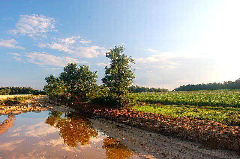 Agrotecnici: crescono le richieste per l'esame di abilitazione