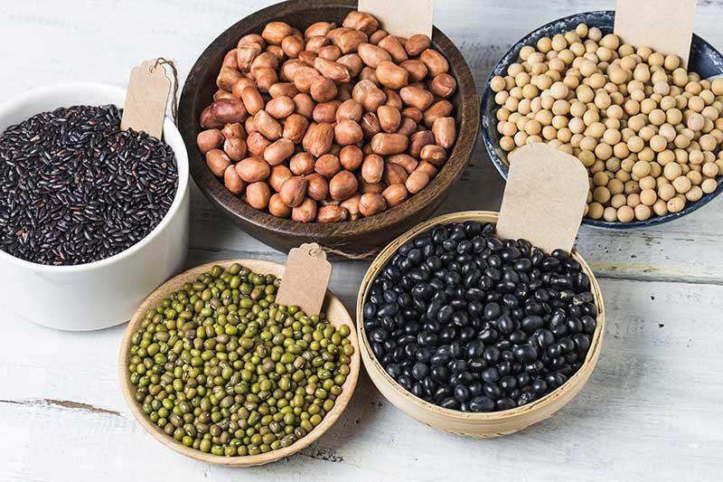 Agricoltura: Italia leader nel settore dei legumi bio