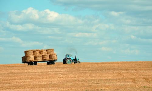 L' innovazione e ricerca agroalimentare: parte #Filiereintelligenti