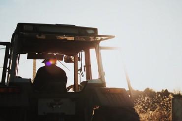 """Flai-Cgil: """"no a pensione da 121 euro per lavoratori agricoli, legge Fornero da modificare"""""""