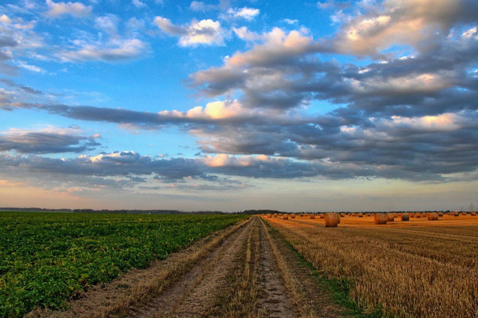 Il rilancio del Sud tra imprese e agricoltura