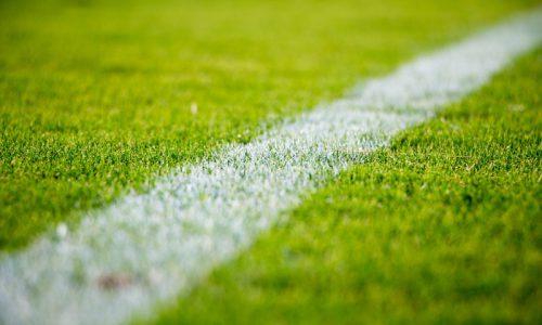 Le prestazioni occasionali nelle società sportive [E. MASSI]