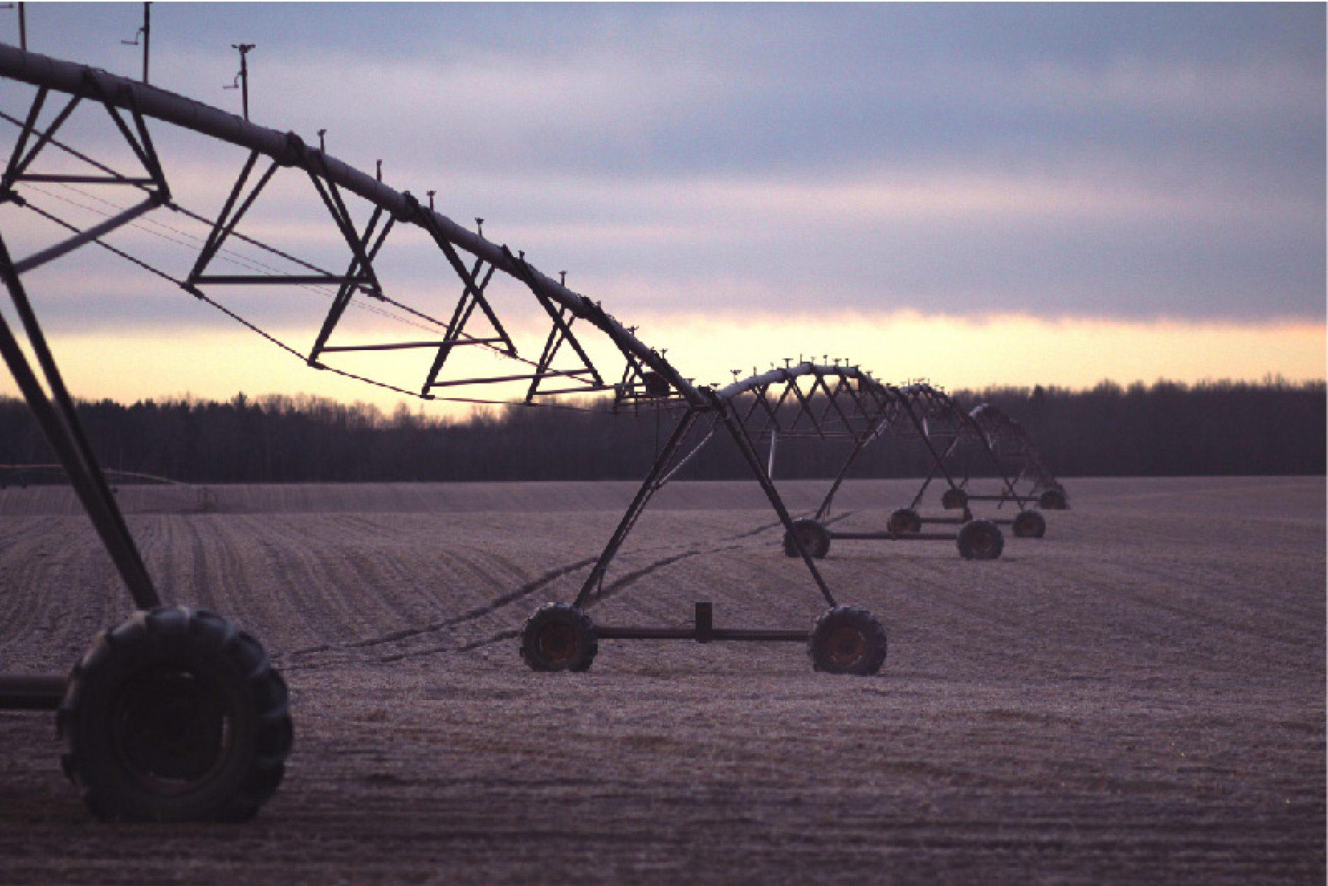 Smart AgriFood: l'Agricoltura 4.0 come vettore dell'economia