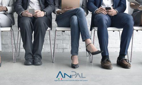 Reddito di cittadinanza e lavoro – Dati ANPAL non incoraggianti