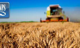 INPS: proroga NASpI e DIS-COLL e lavoro in agricoltura