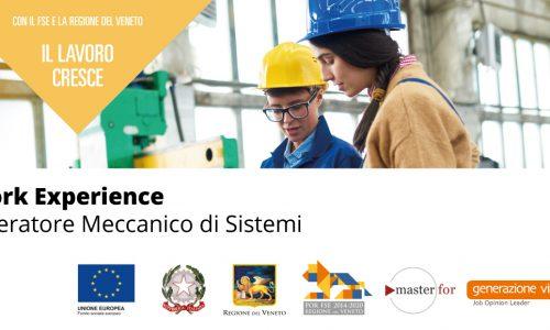 Work experience Operatore Meccanico di Sistemi [Pal Veneto]